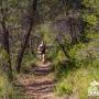 ferez_trail_gallery_03